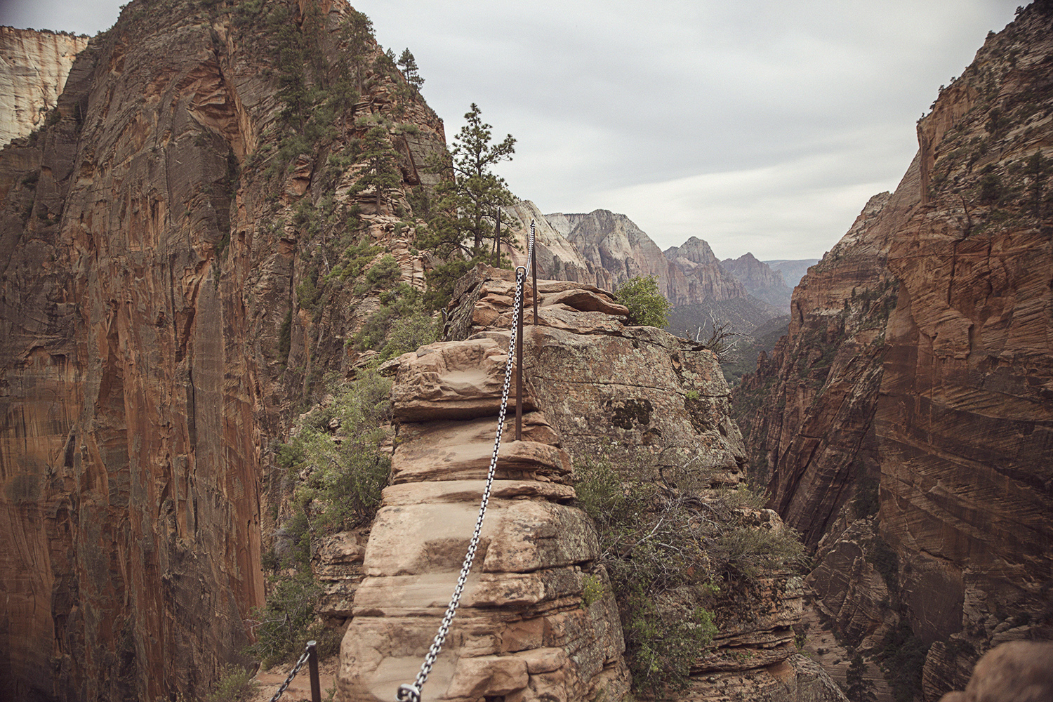 2017-06-08_Zion_Nationalpark_028.jpg