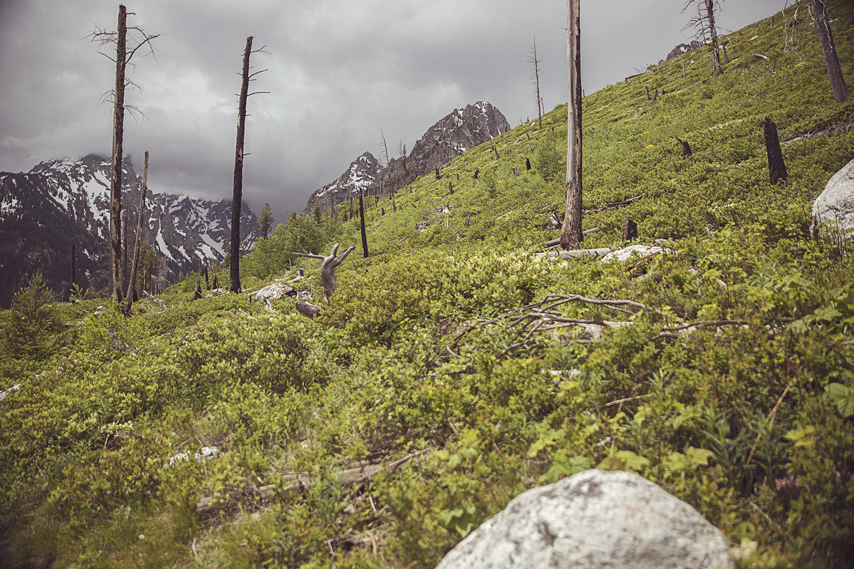 2017-06-12_Teton_Nationalpark_051.jpg