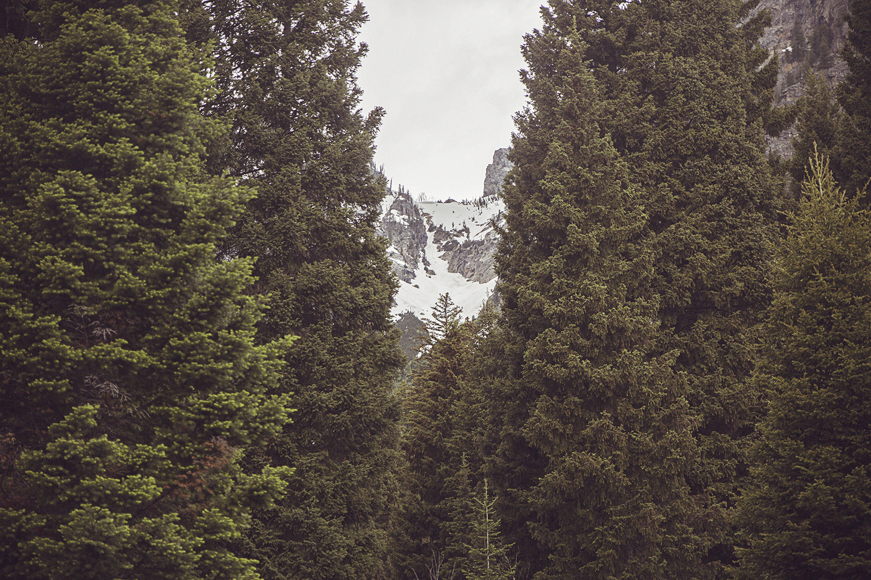 2017-06-12_Teton_Nationalpark_066.jpg