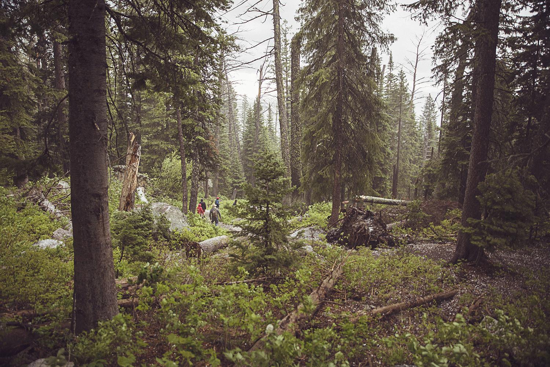 2017-06-12_Teton_Nationalpark_073.jpg