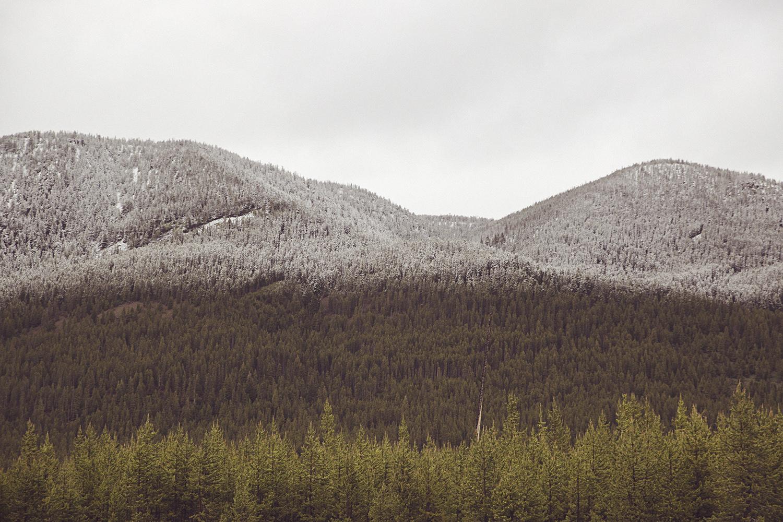 2017-06-13_Yellowstone_Nationalpark_093.jpg