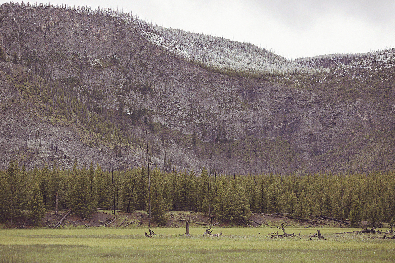 2017-06-13_Yellowstone_Nationalpark_103.jpg