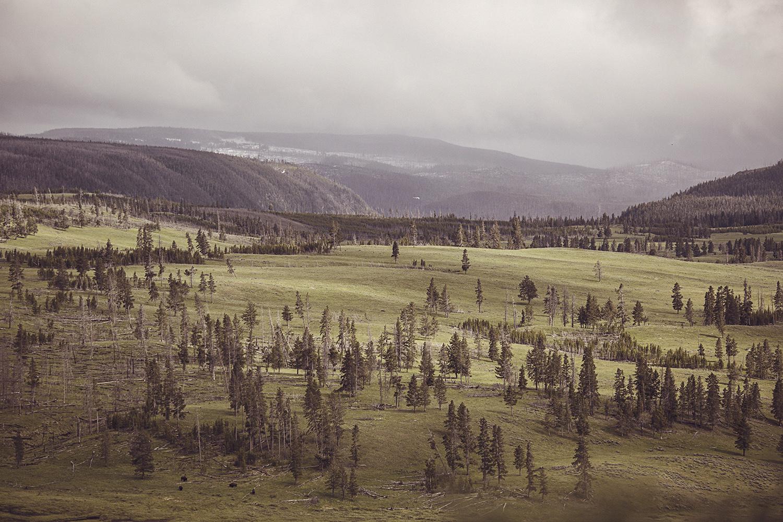 2017-06-13_Yellowstone_Nationalpark_147.jpg
