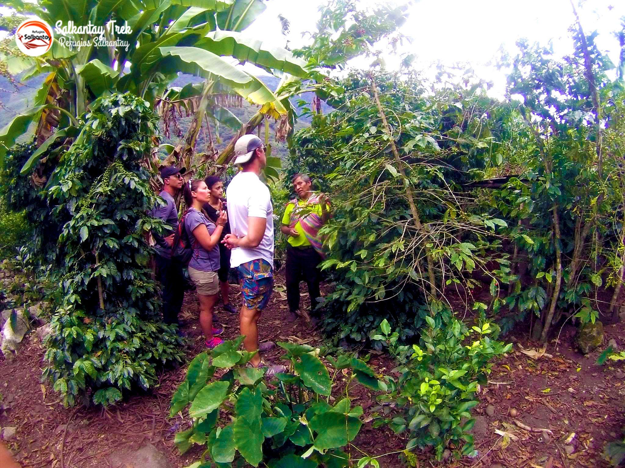 Refugios Lucmabamba (3).jpg