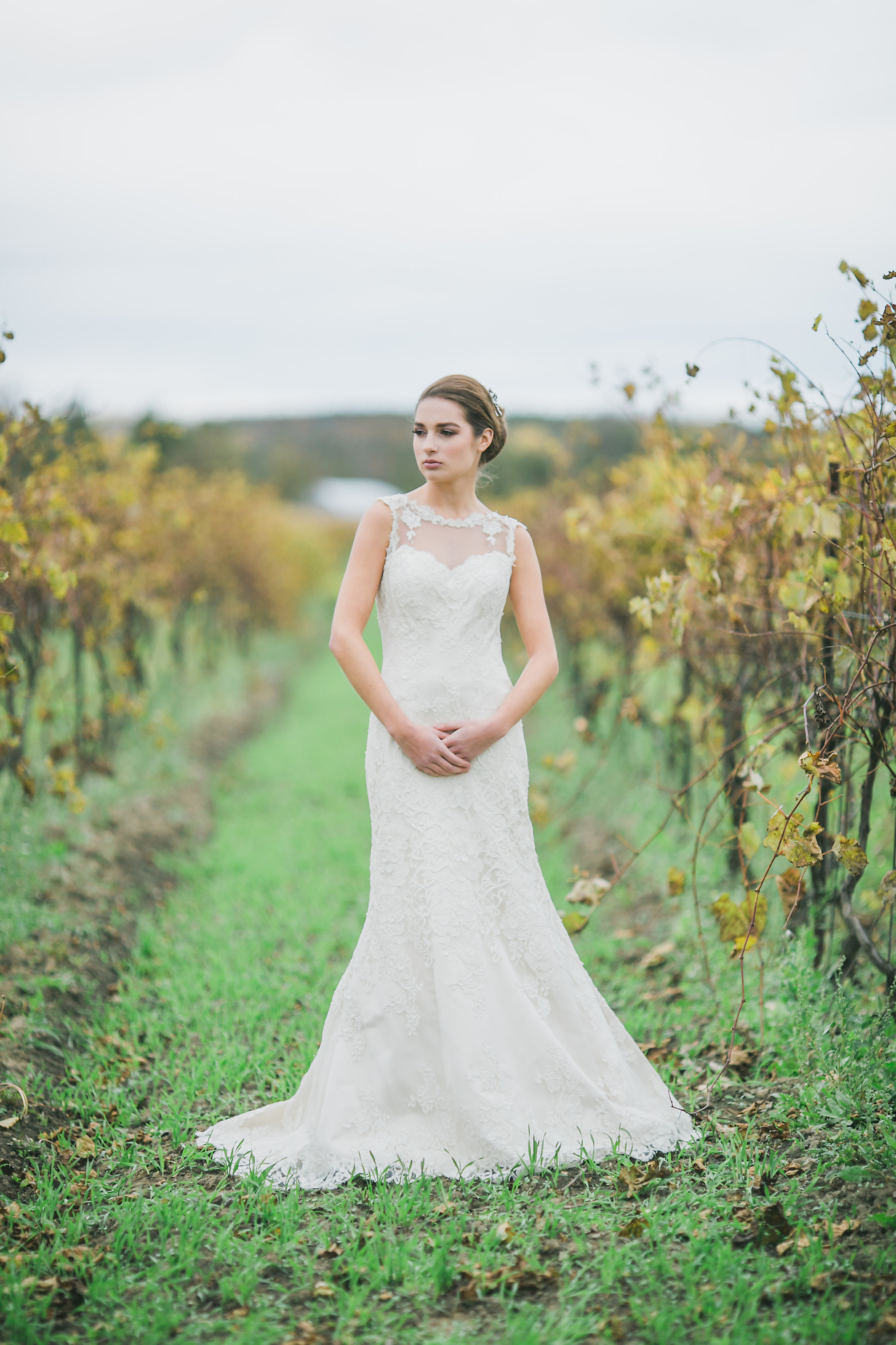 Phoebe Lo Events Toronto Wedding - Willow Springs Winery Wedluxe Creative 012.jpg