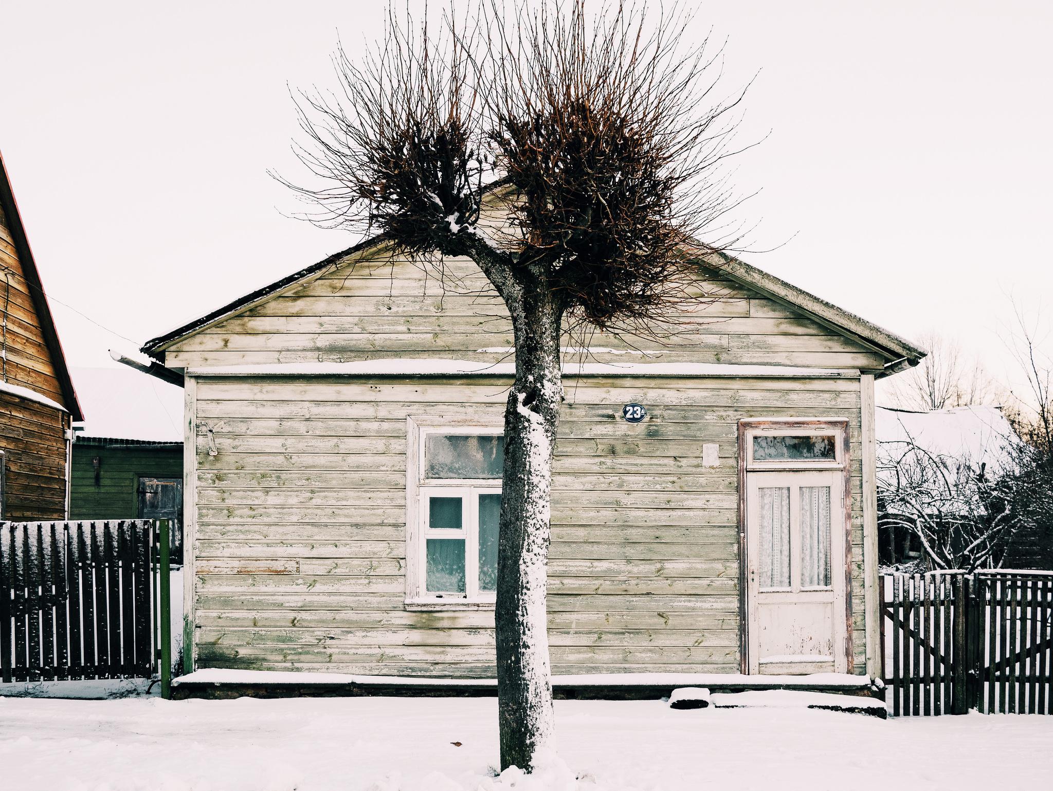 Võru, Estonia. January 2015.