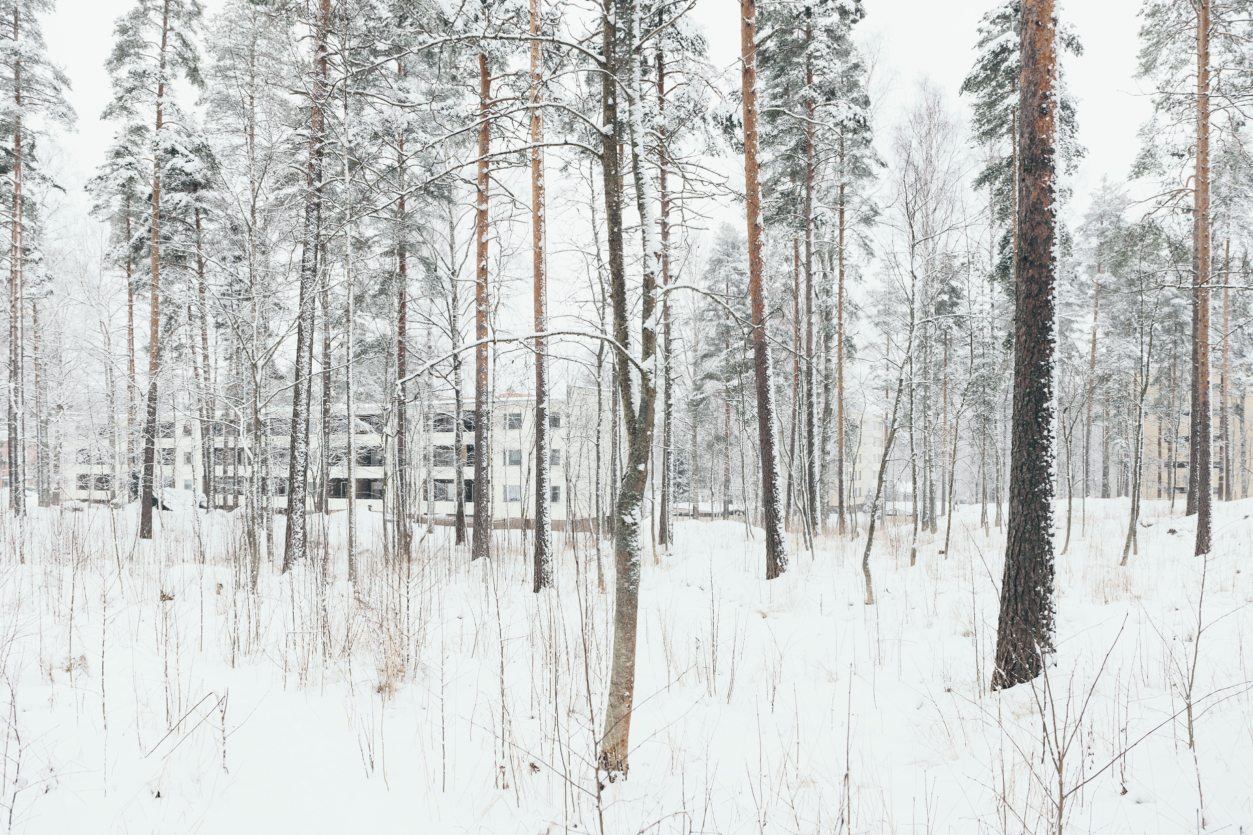 Heinola, Finland, February 2016