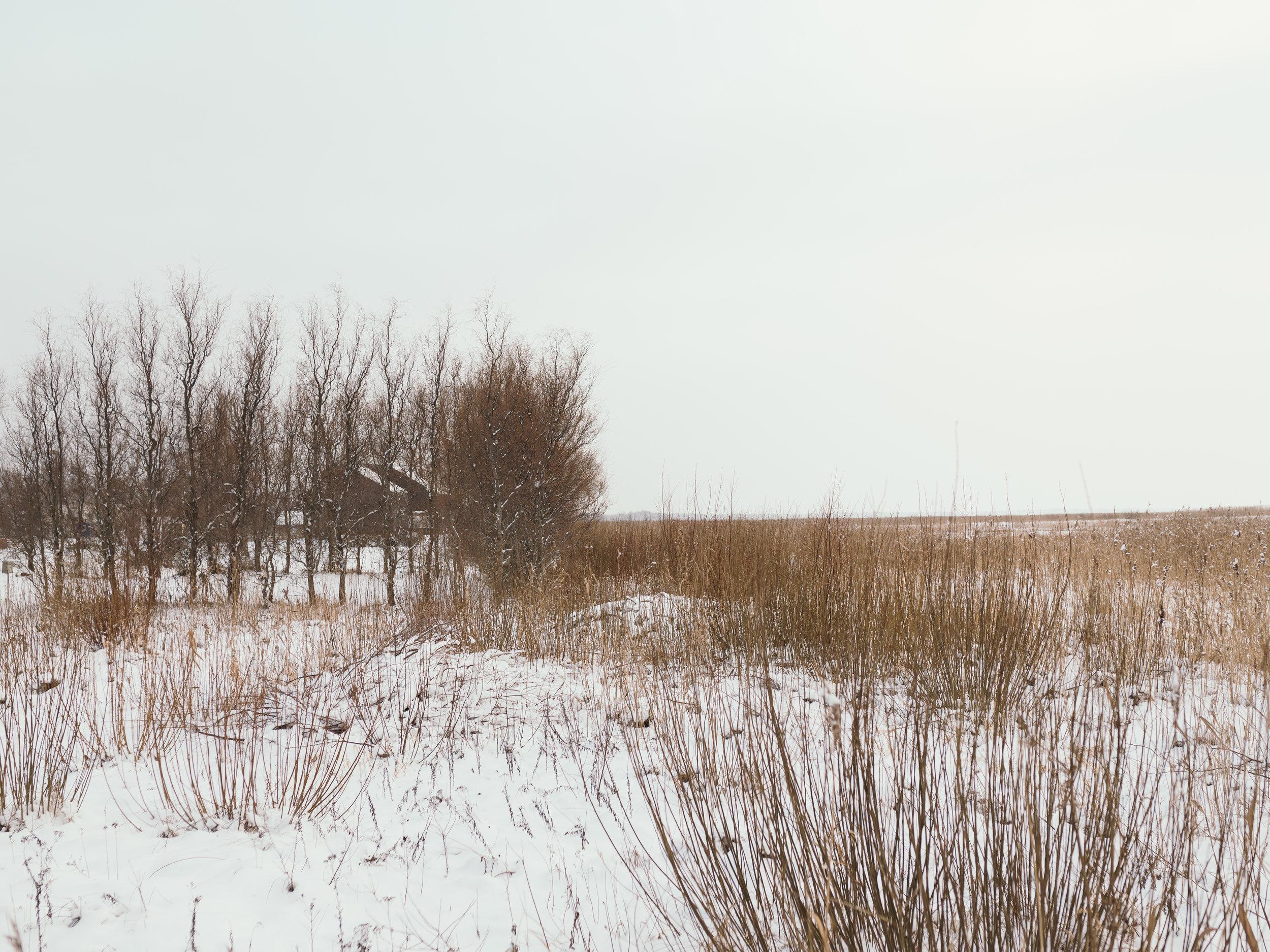 Jõesuu, Tartumaa, Estonia, December 2018