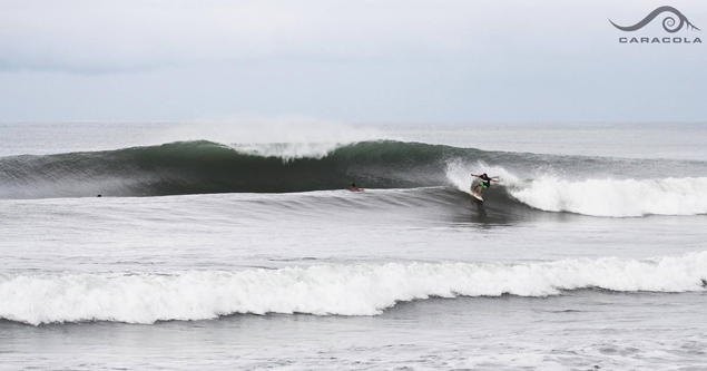 Don't steal this. Don't you dare steal this. Photo: Caracola Surf