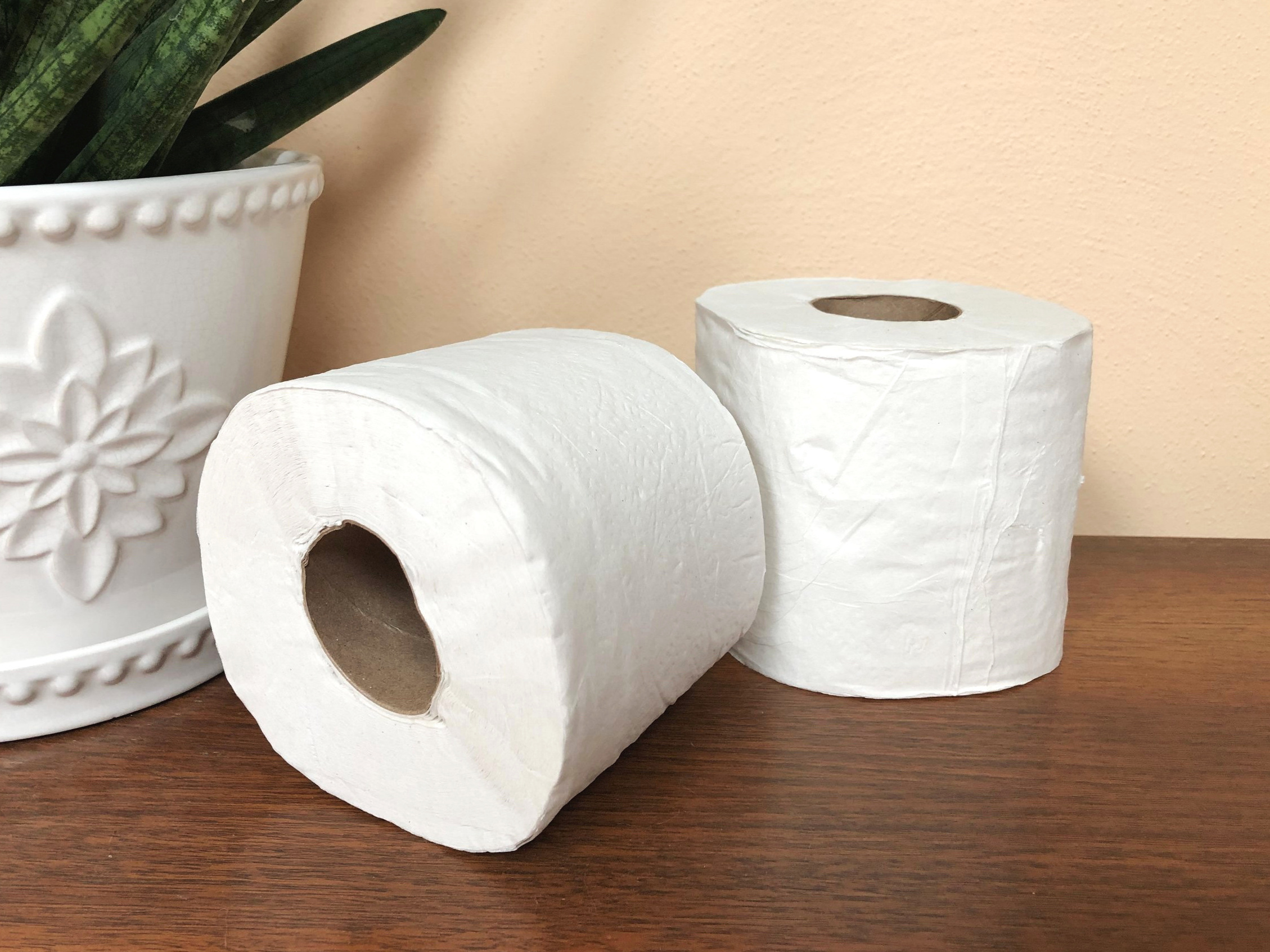 The last two rolls of toilet paper from trees that will ever find use in this house.