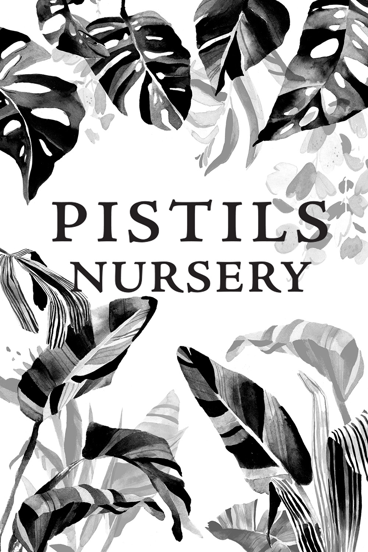 pistils nursery signboard front