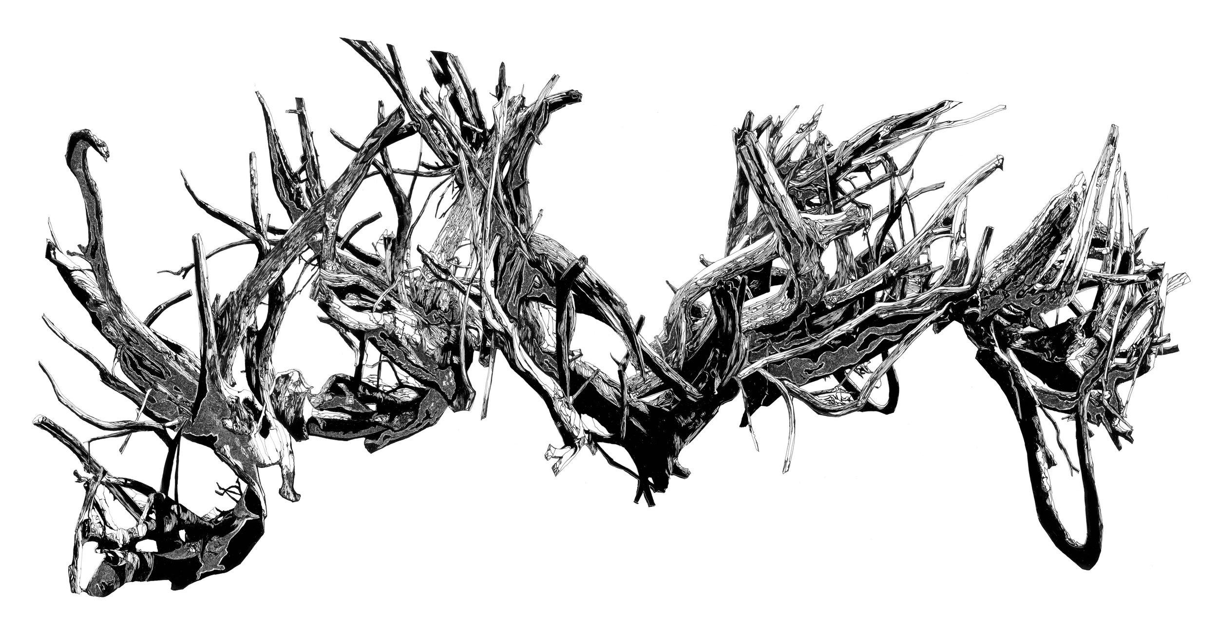 driftwood composite copy 2.jpg