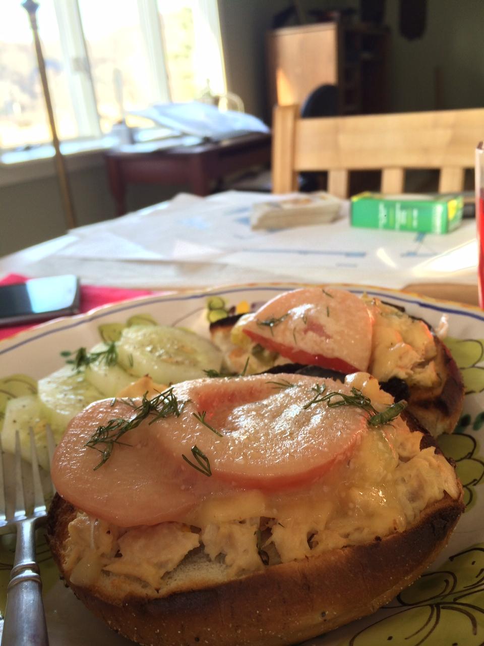Tuna Melt with Farm Grown Cucumbers