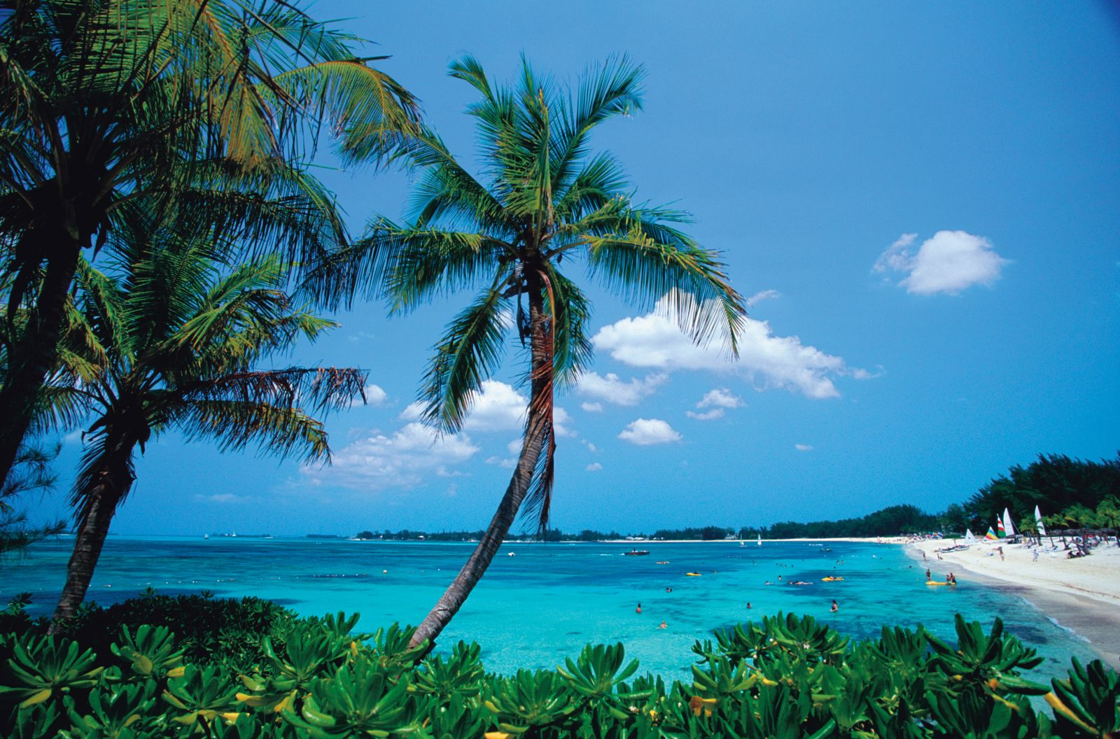 """New Providence, Bahamas - """"Into The Blue"""""""