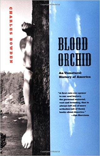 BloodOrchid.jpg