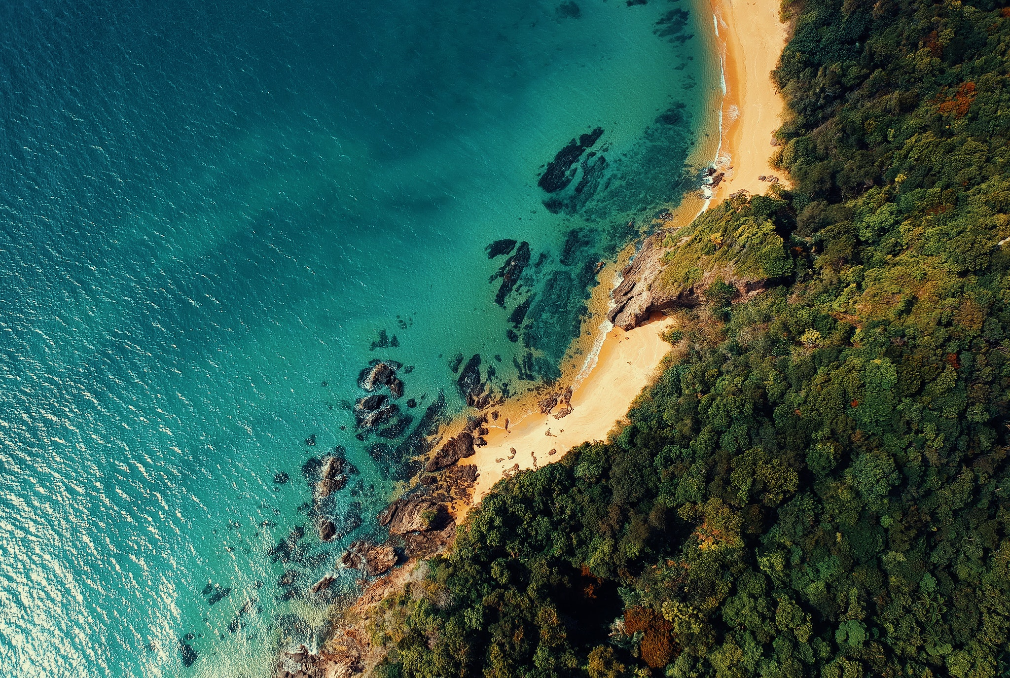 aerial-shot-aerial-view-beach-1031200.jpg