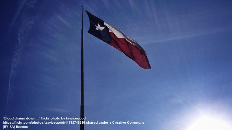 Texas Flag Sun.jpg