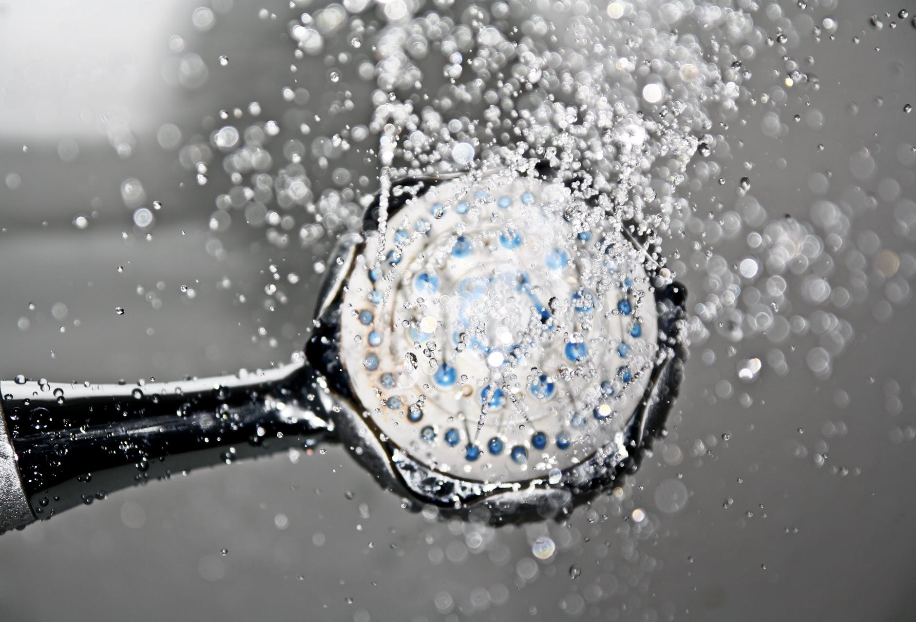 shower-shower-head-water-drop-of-water-161502 (1).jpeg