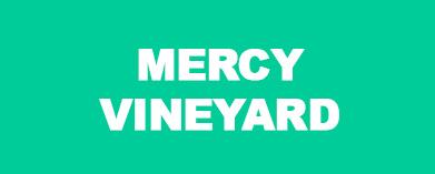 Mercy Vineyard, Dunedin