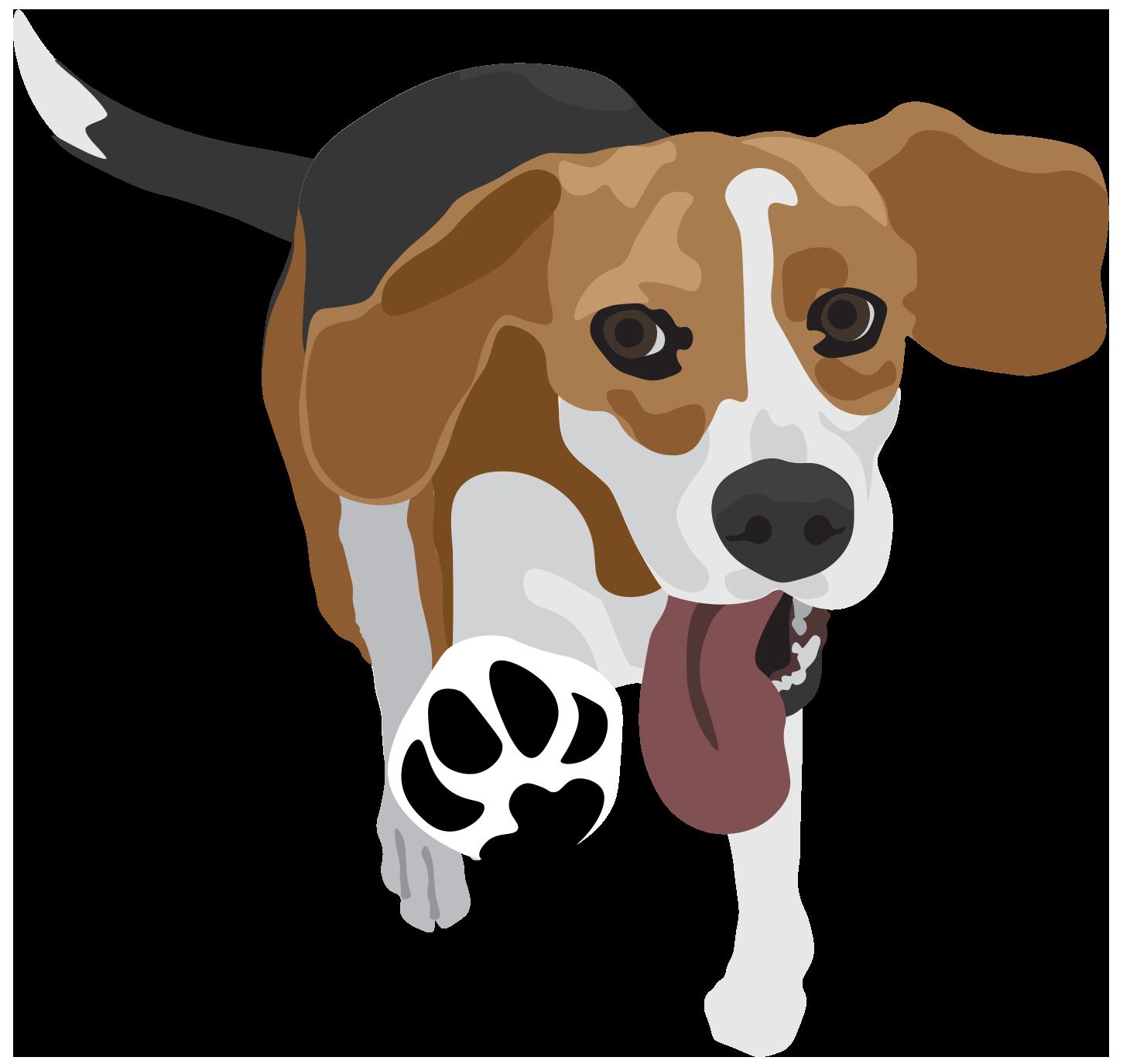 PetNess_Beagle_Art_v2_@2x.png