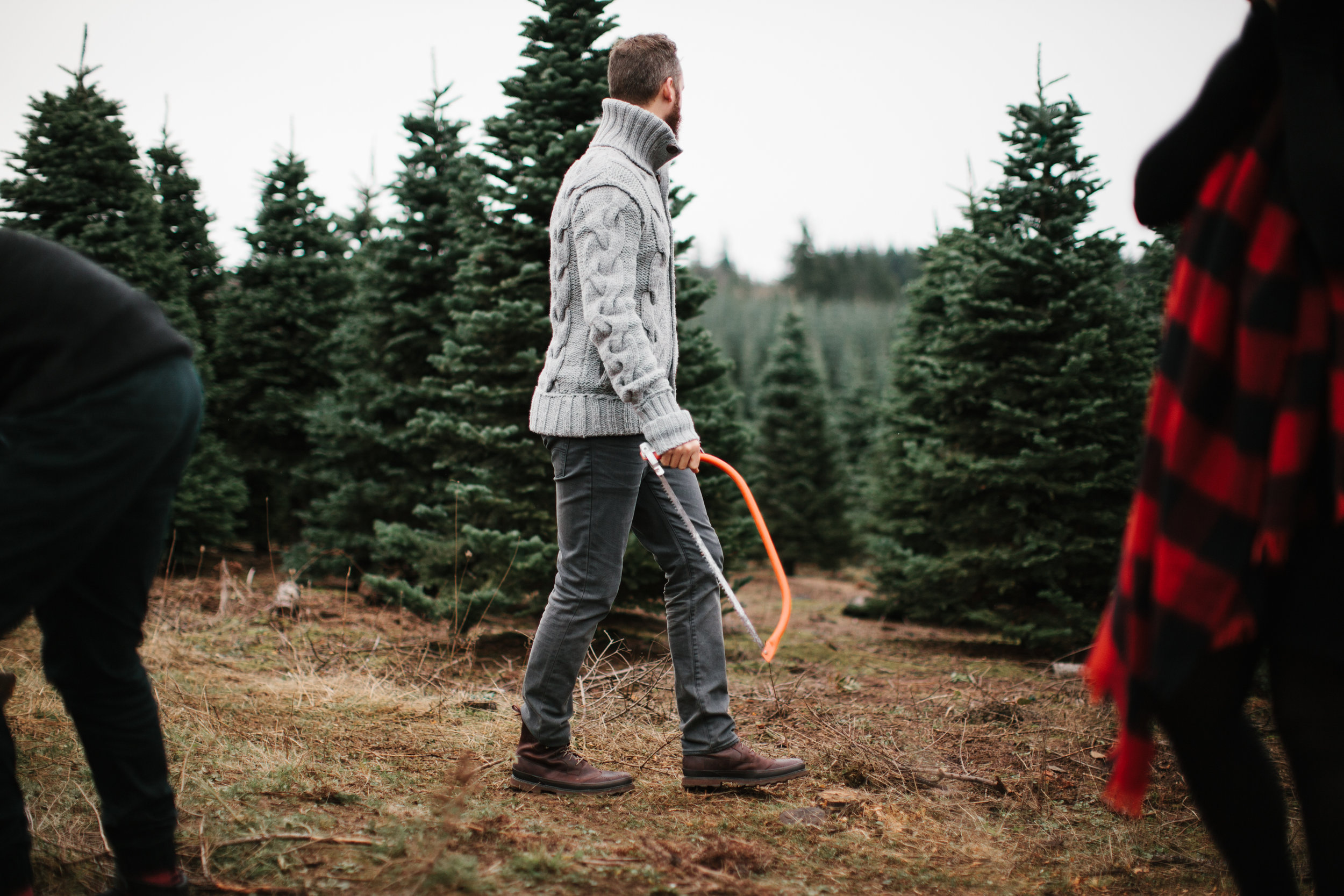 man holding saw looking for christmas tree