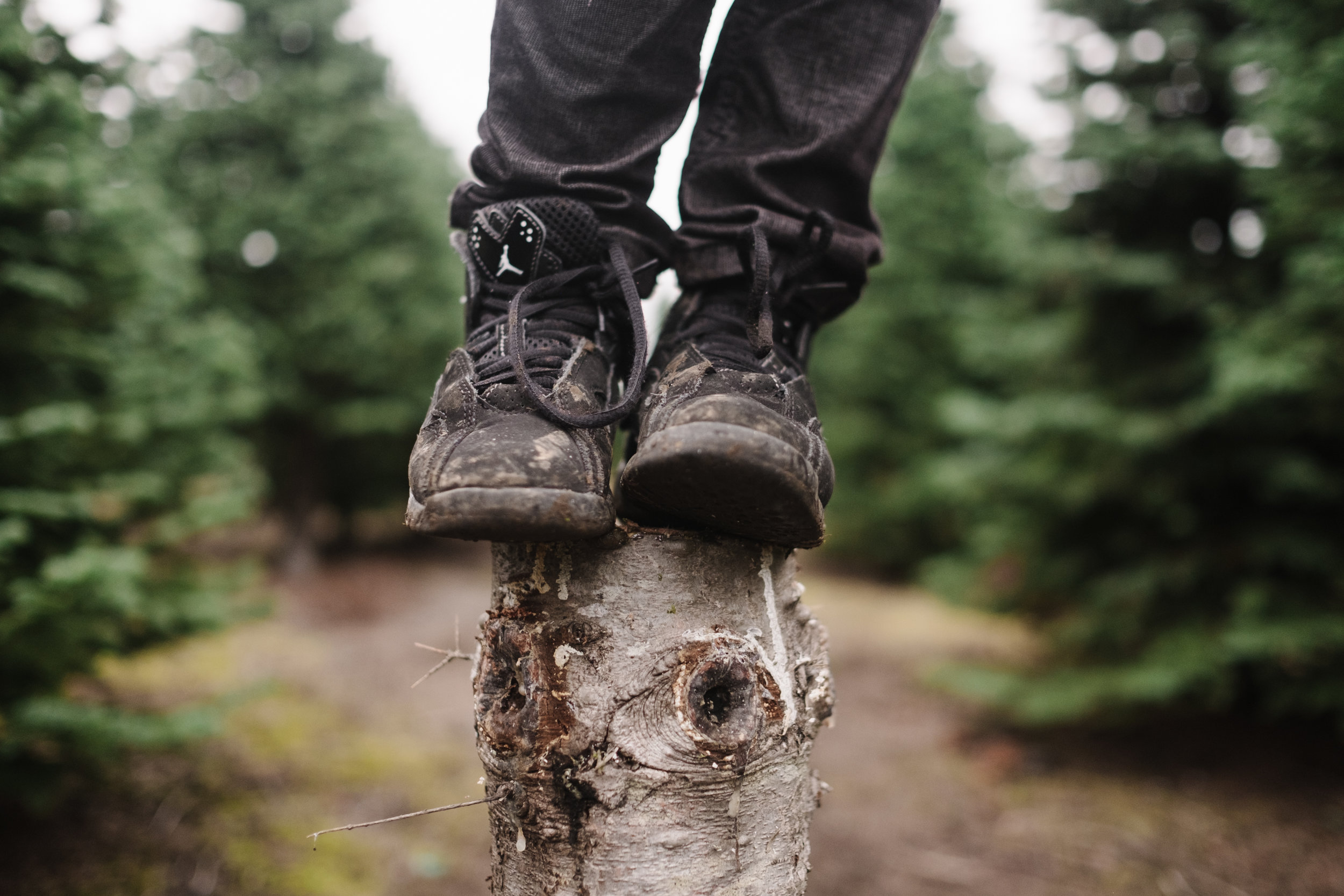 boys shoes on tree stump