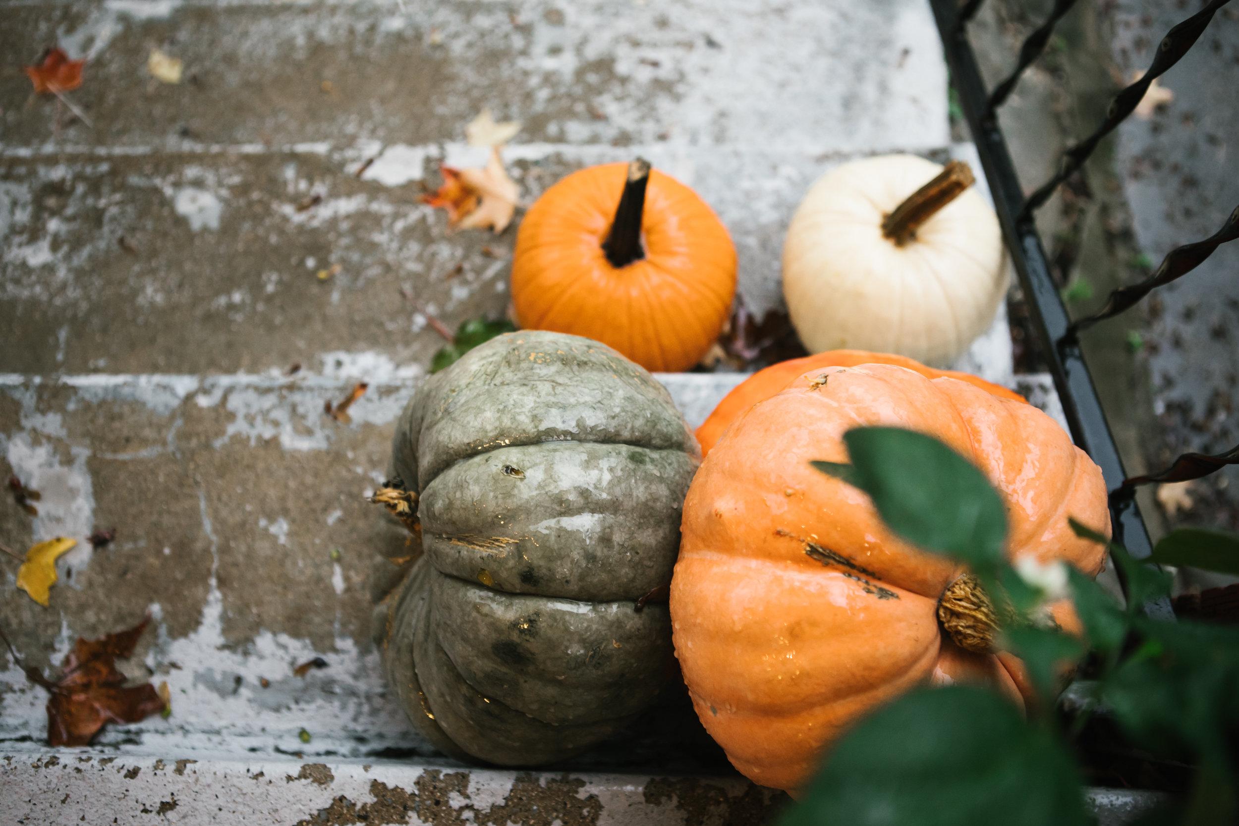 wet pumpkins on porch