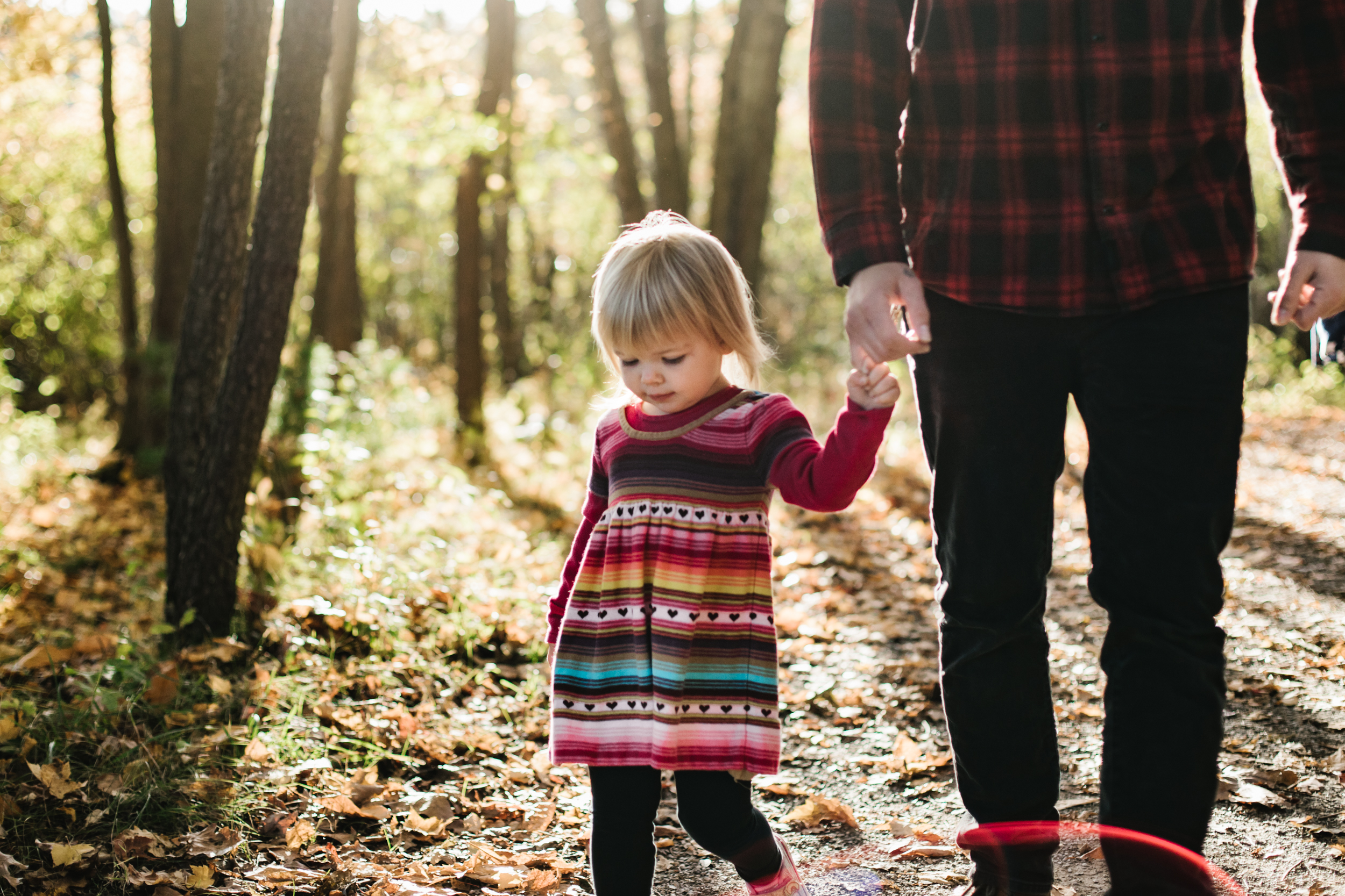 Daughter holding fathers hand in woods