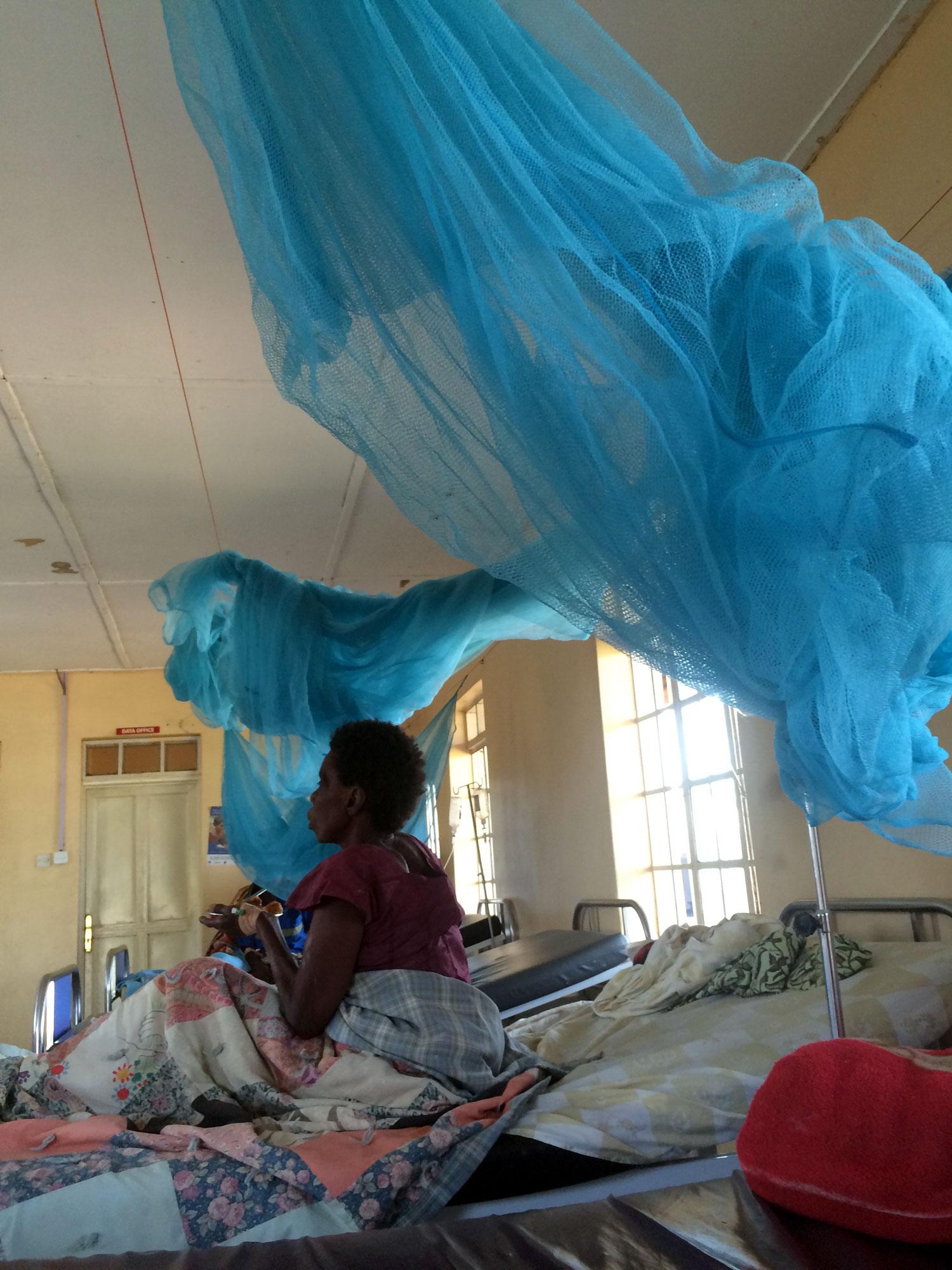 Ward Bed Nets.