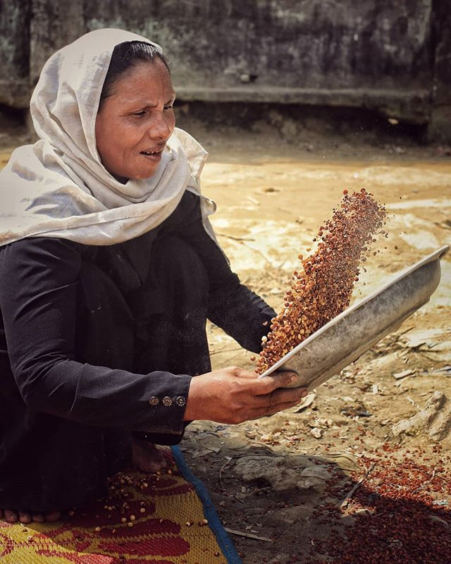 Sifting grain during the heat of the day with very little water available to them and no shade.  Honestly,  I don't know how these women do it . . . #nayapara #refugeecamplife #refuge #refugeecrisis #rohingya #rohingyacrisis #streetphotography #dailylife #bangladesh #livelihoods #powertotheshe #endurance #humaninterestphotography #dslrofficial