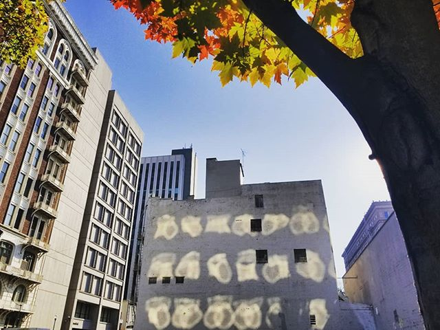 Incredible light patterns and fall colors.  Still not sure what caused the light to reflect in such a way off this building. Amazing . . #light #reflection #fall #portlandoregon #mobilephotography1