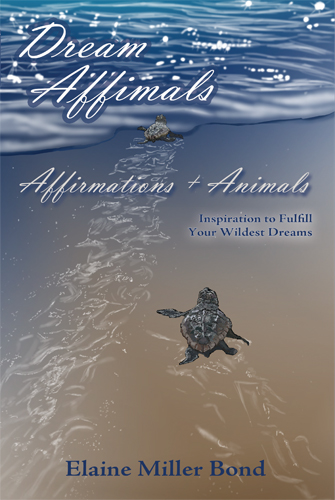 Dream Affimals: Affirmations + Animals  Written & illustrated by Elaine Miller Bond Sunstone Press (July 1, 2013)   ISBN-10: 0865349460; ISBN-13: 978-0865349469
