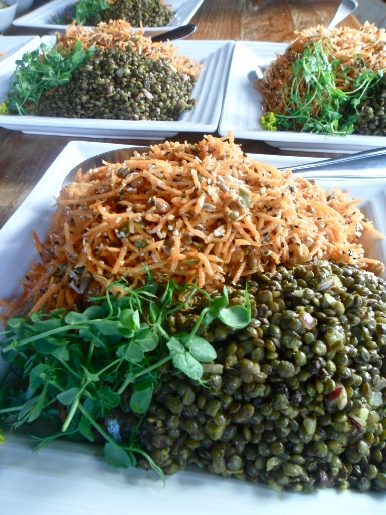 Puy Lentil Salad and Raw Carrot Salad