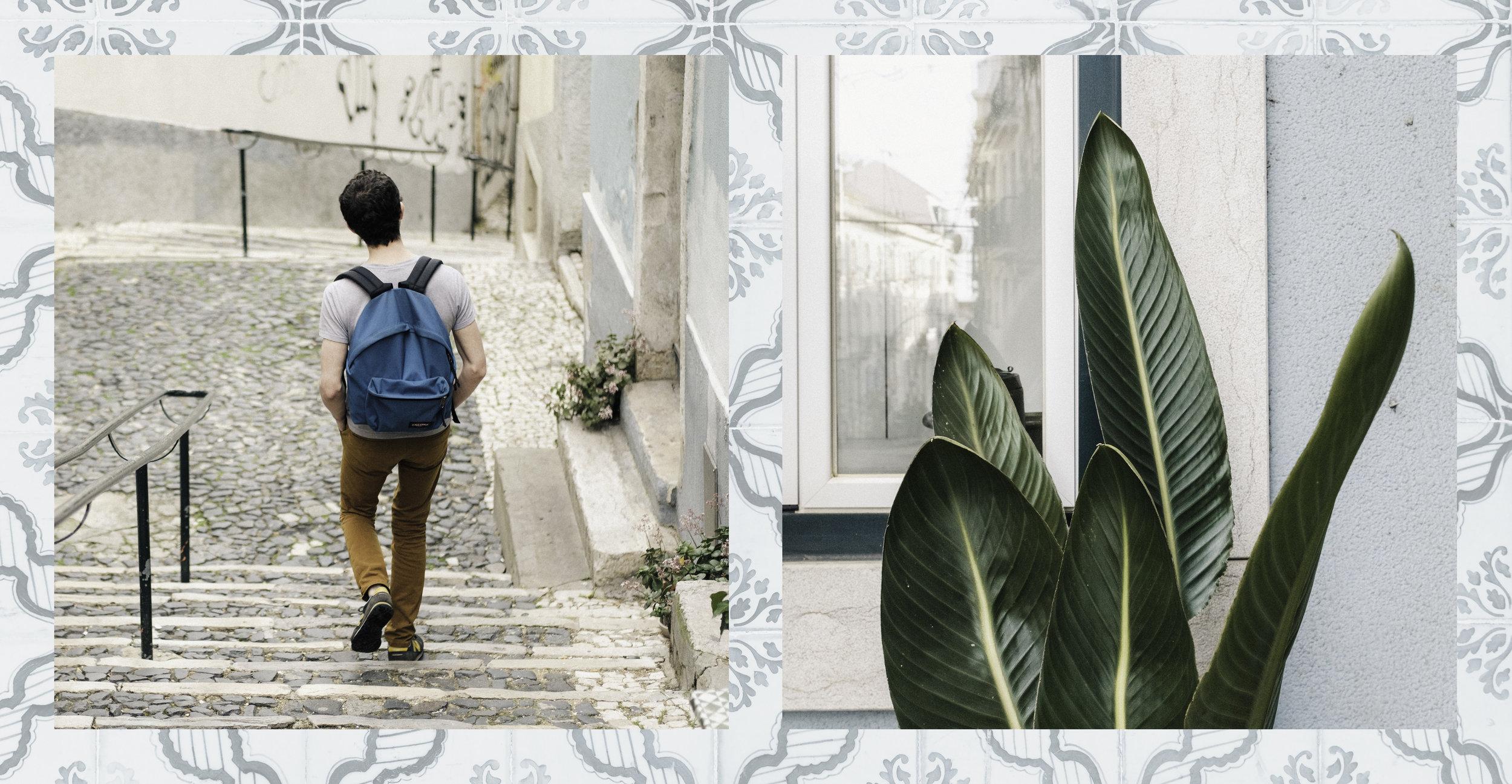 CollageSquare2.jpg