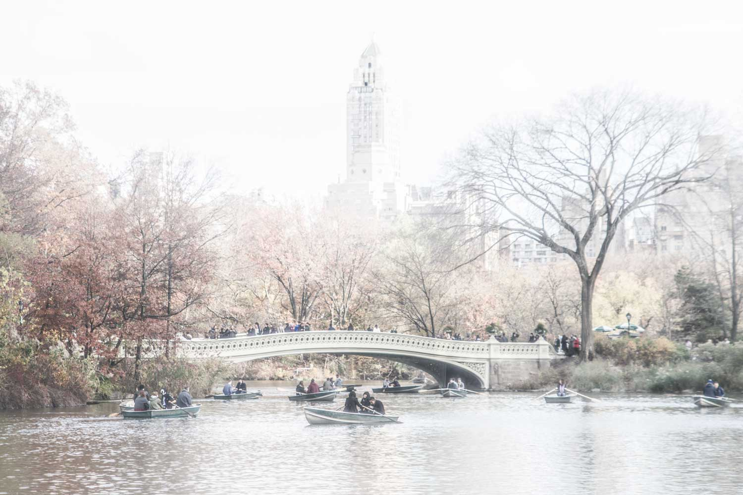 I-recall-Central-Park-in-Fall-for-WEB.jpg
