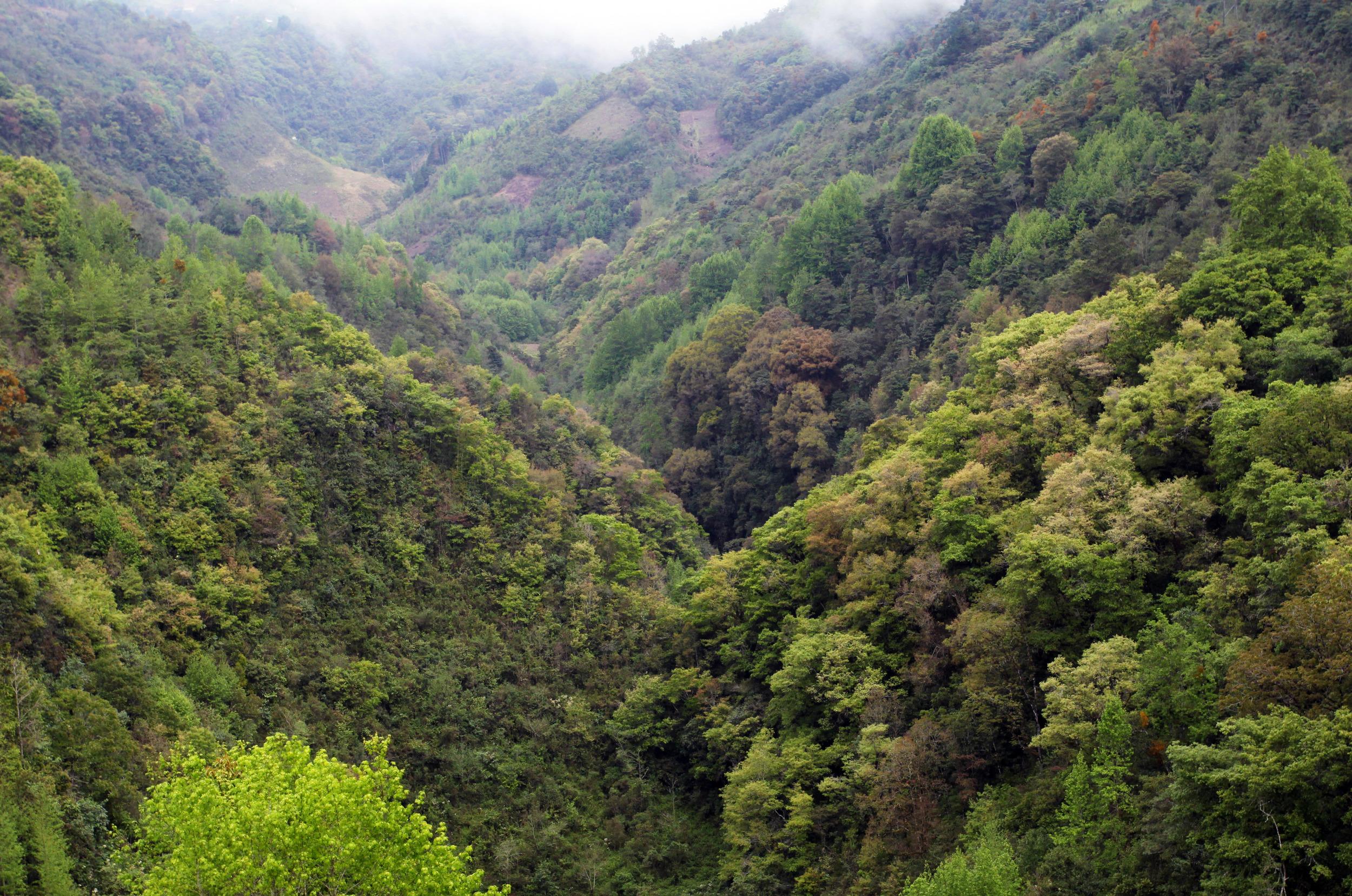 In a massive valley with no surface outlet,Sótano de San Agustín funnels water into Sistema Huautla like a bathtub drain.