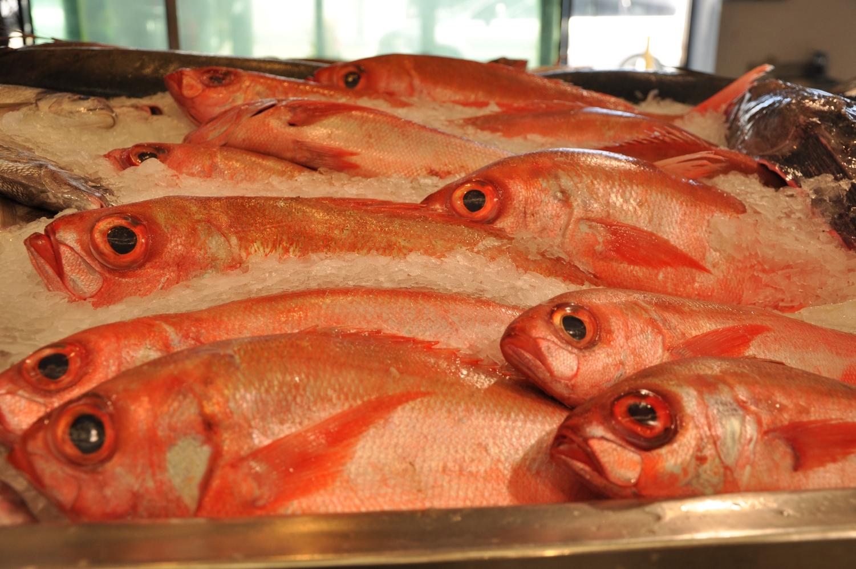 Auckland seafood market 9.jpg