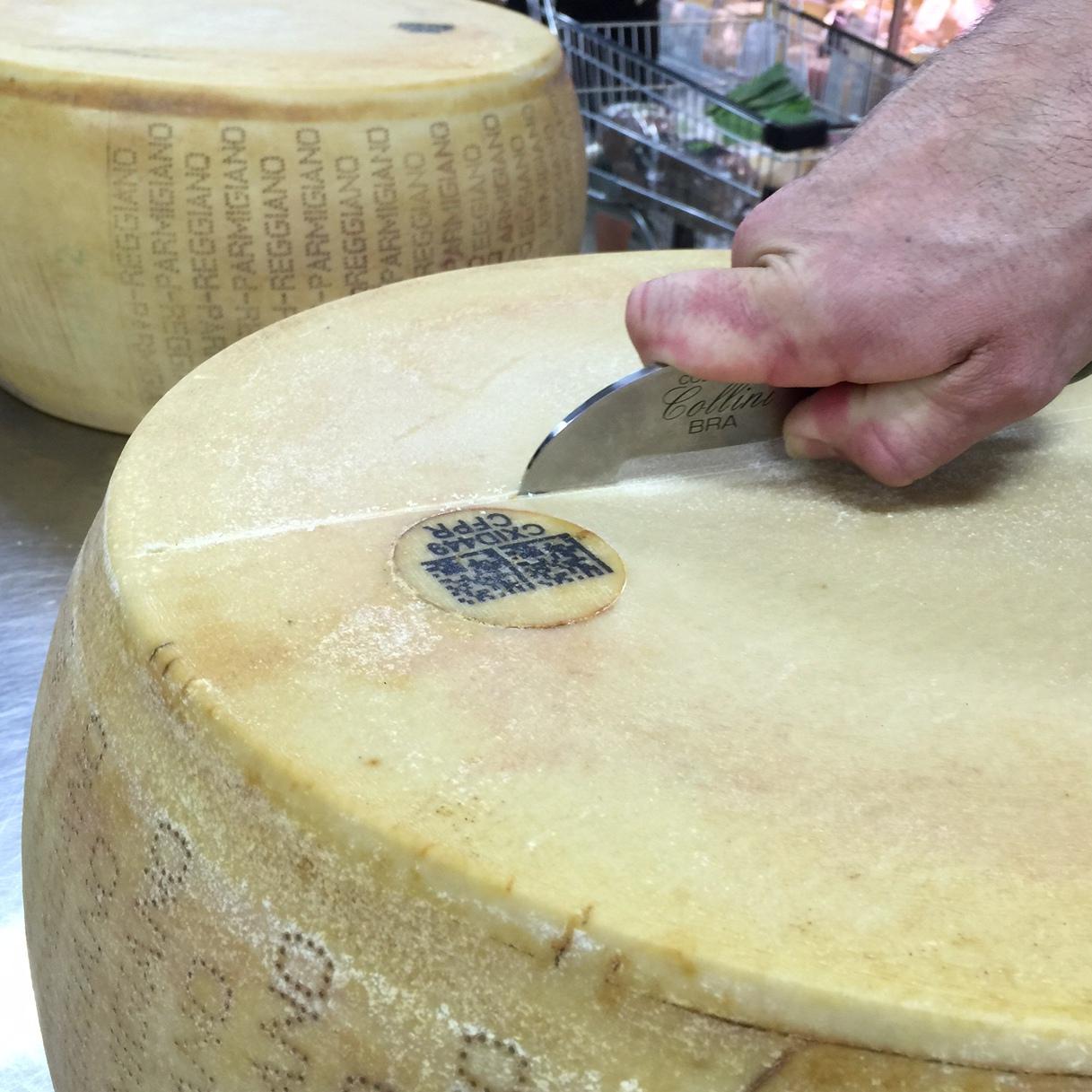 Scoring outer of Parmigiano Reggiano wheel