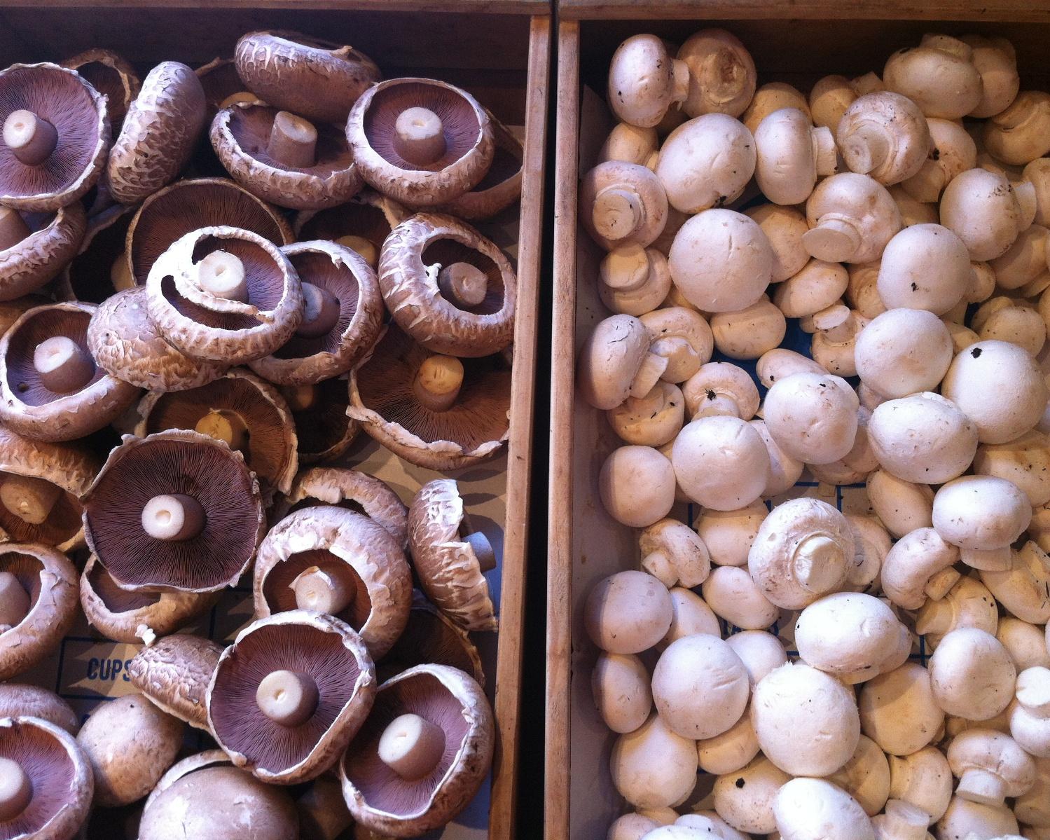 Portobello button mushrooms
