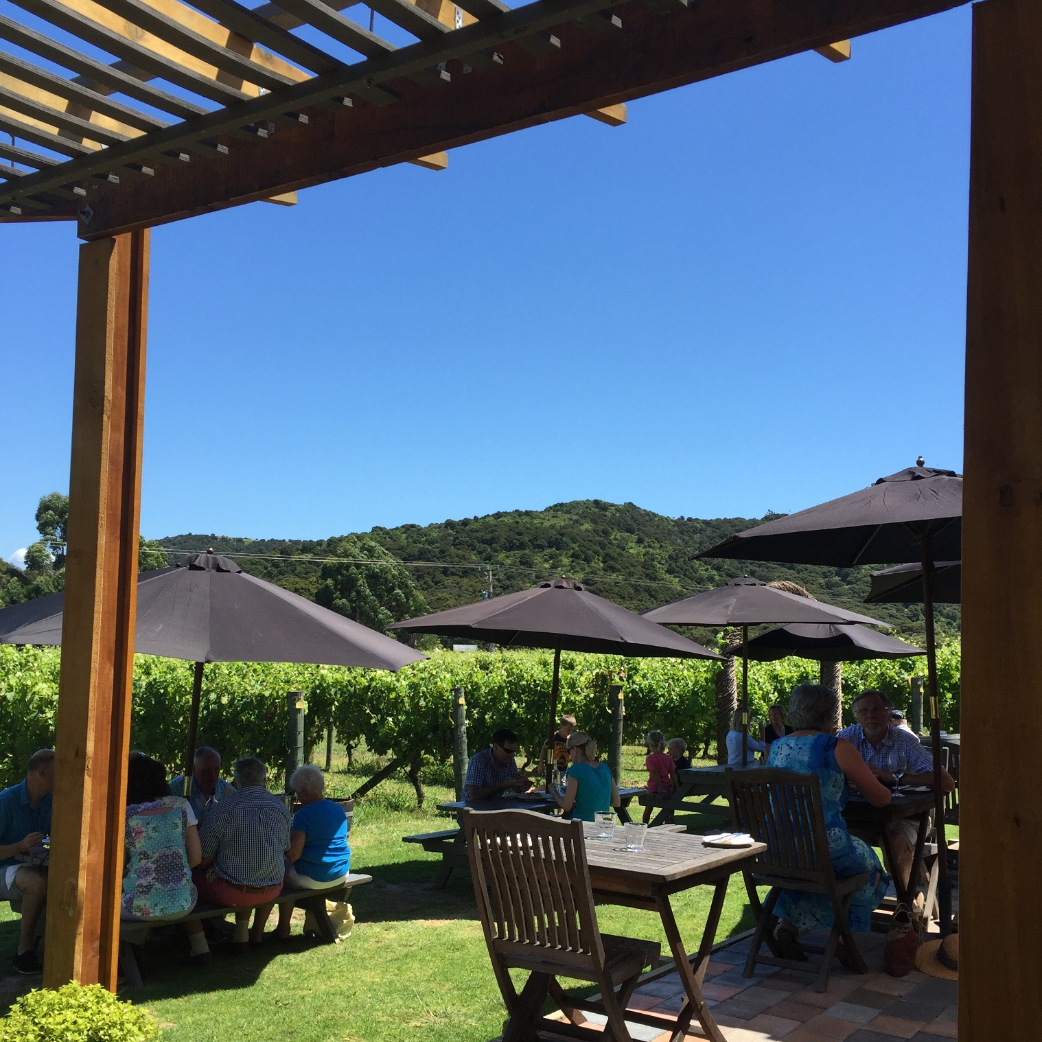 Lunch amongst the vines at Passage Rock