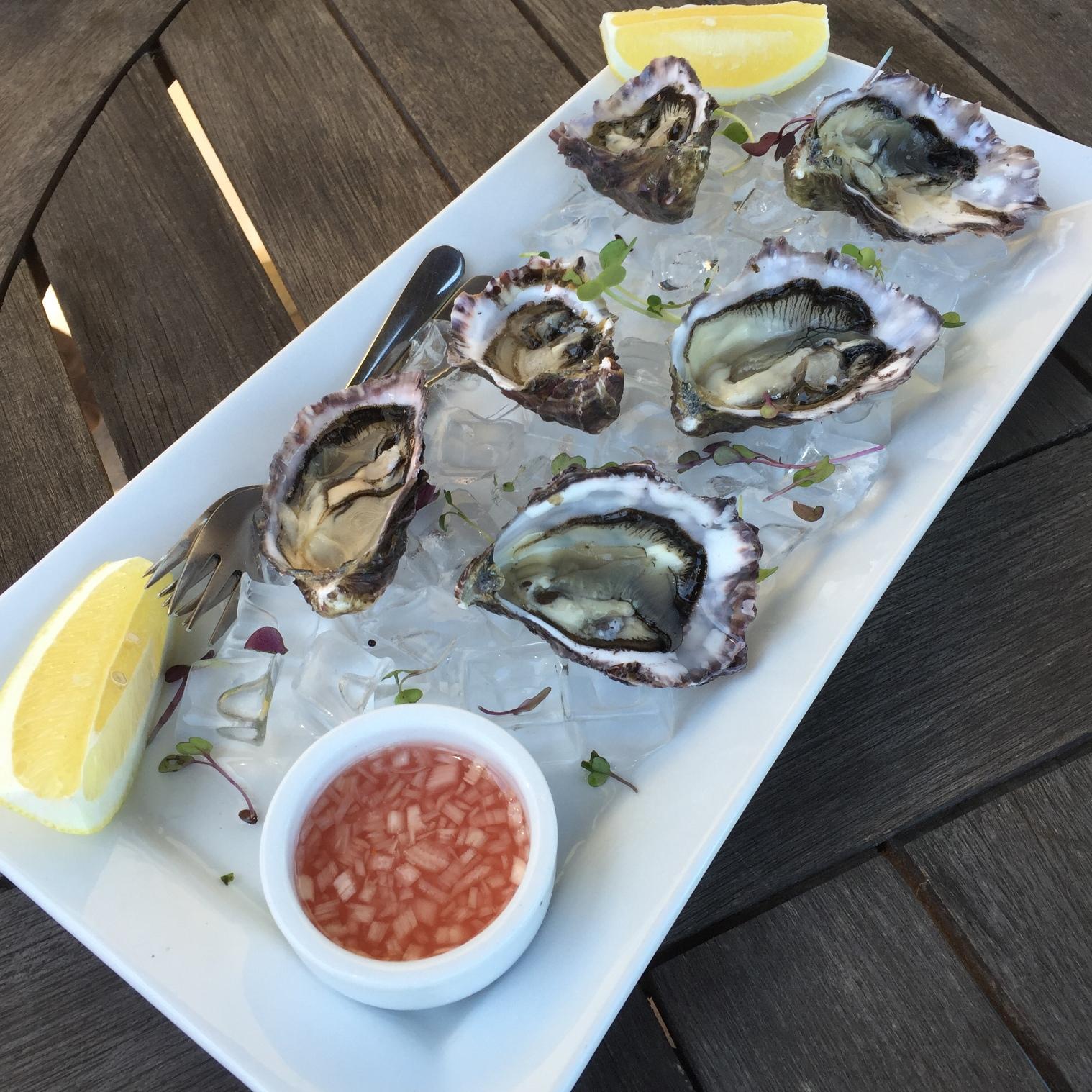 Te Maketu oysters