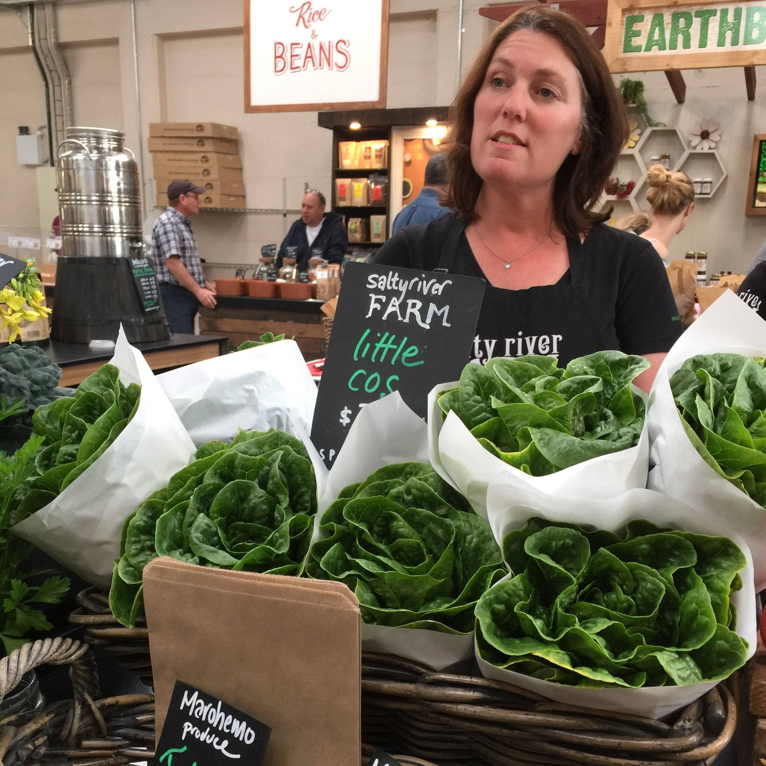 Beautiful salad greens and herbs from Salty River Farms