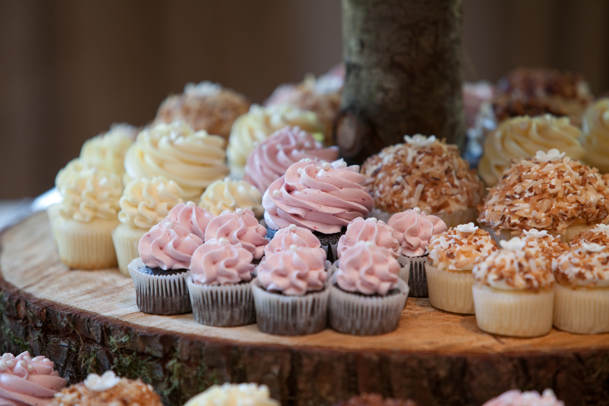 wedding cupcakes-vancouver wedding.jpeg