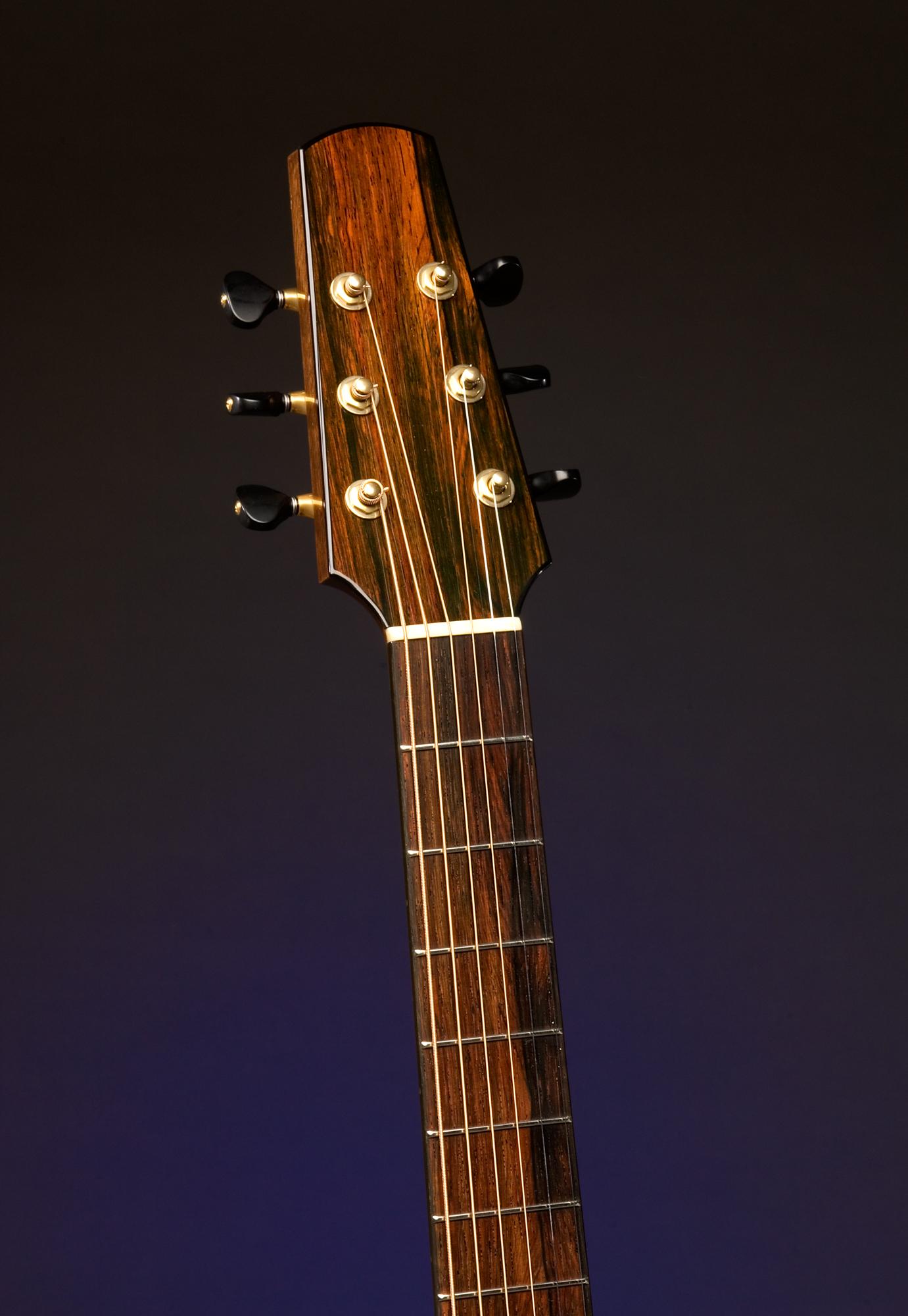 Traugott Model R Brazilian guitar