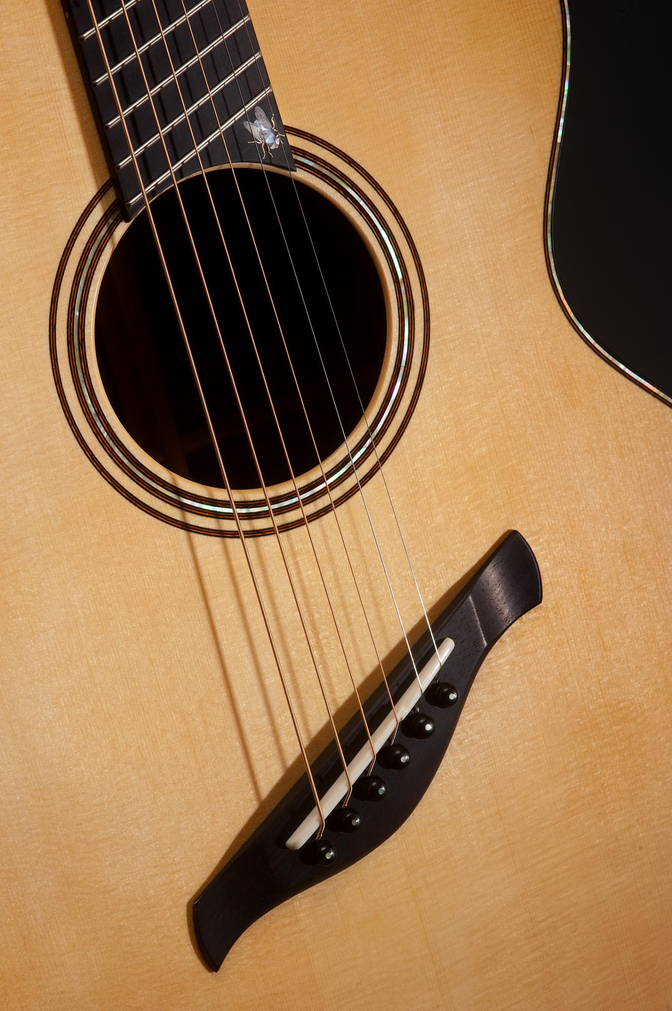 Traugott Model BK Brazilian fan fret guitar