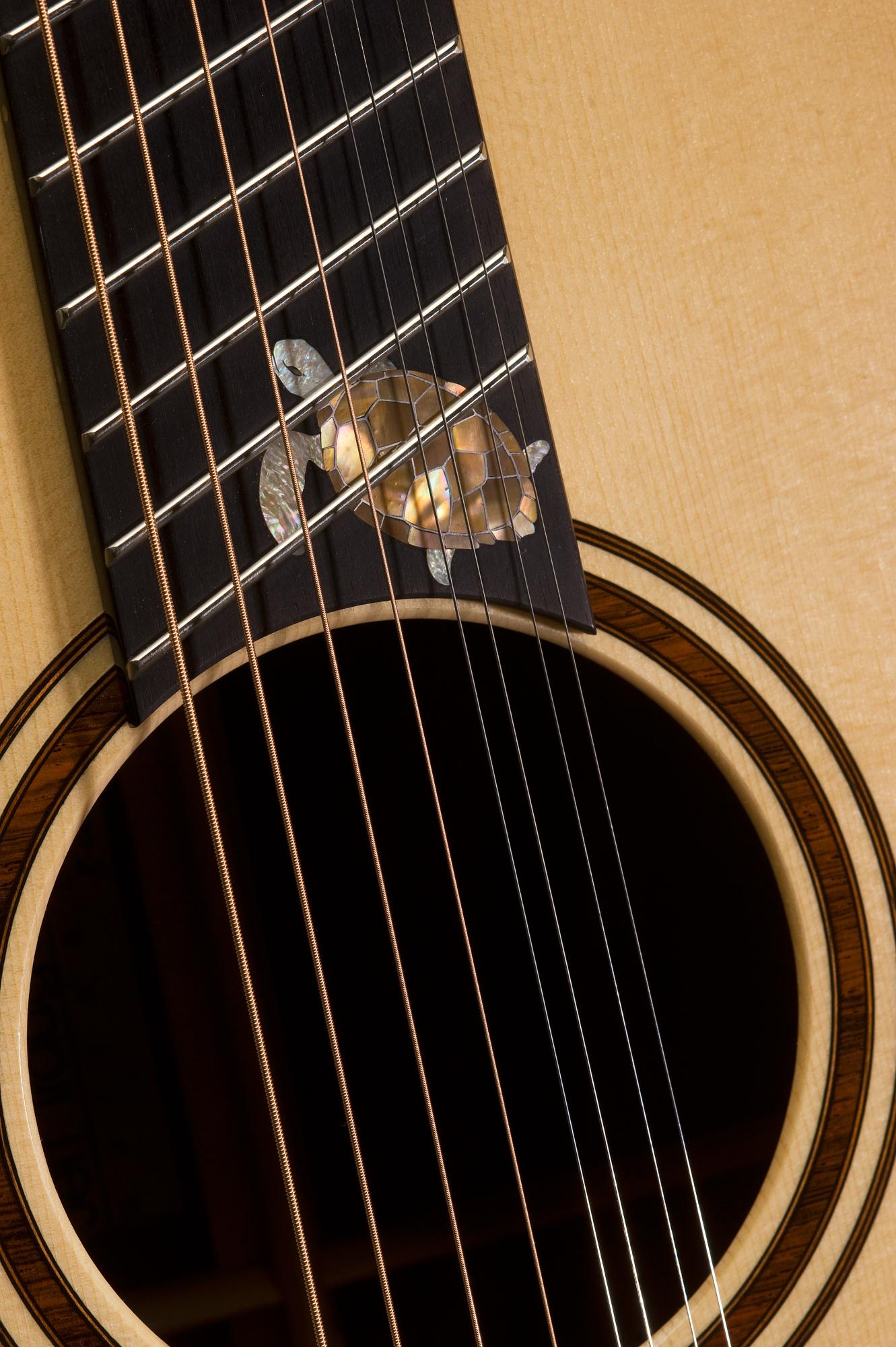 Traugott Model R Brazilian Fan Fret 8-string