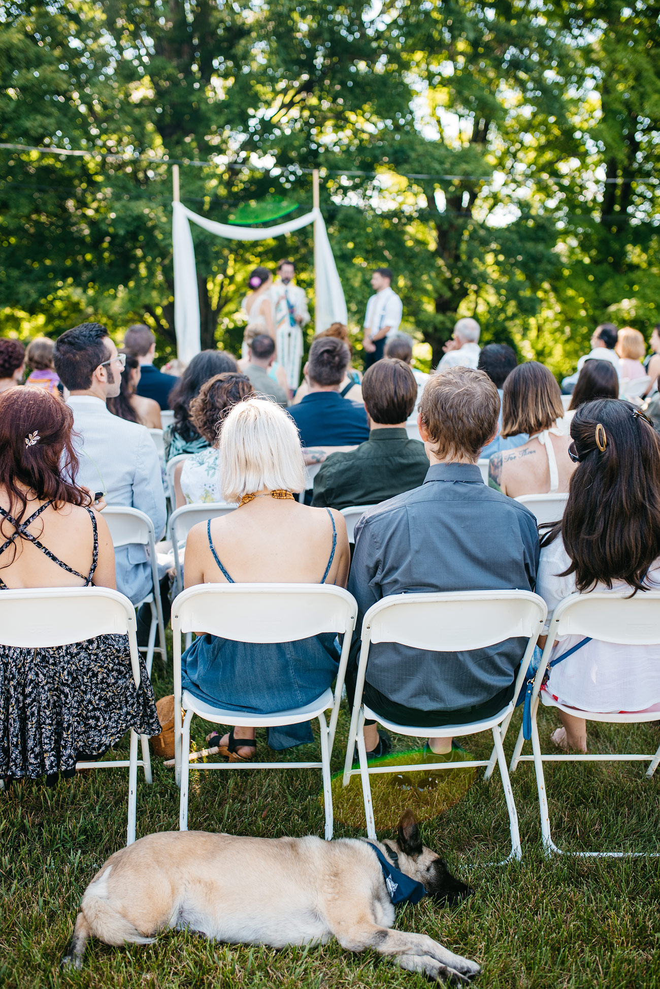 adorable dog sleeping during the wedding ceremony at a lovely new england diy backyard wedding