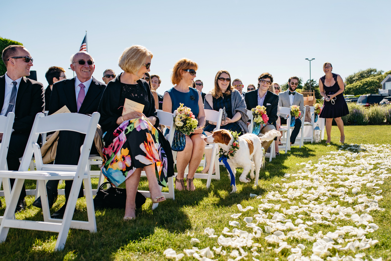 dog going down the aisle in cape cod wychmere weddings cape cod photography