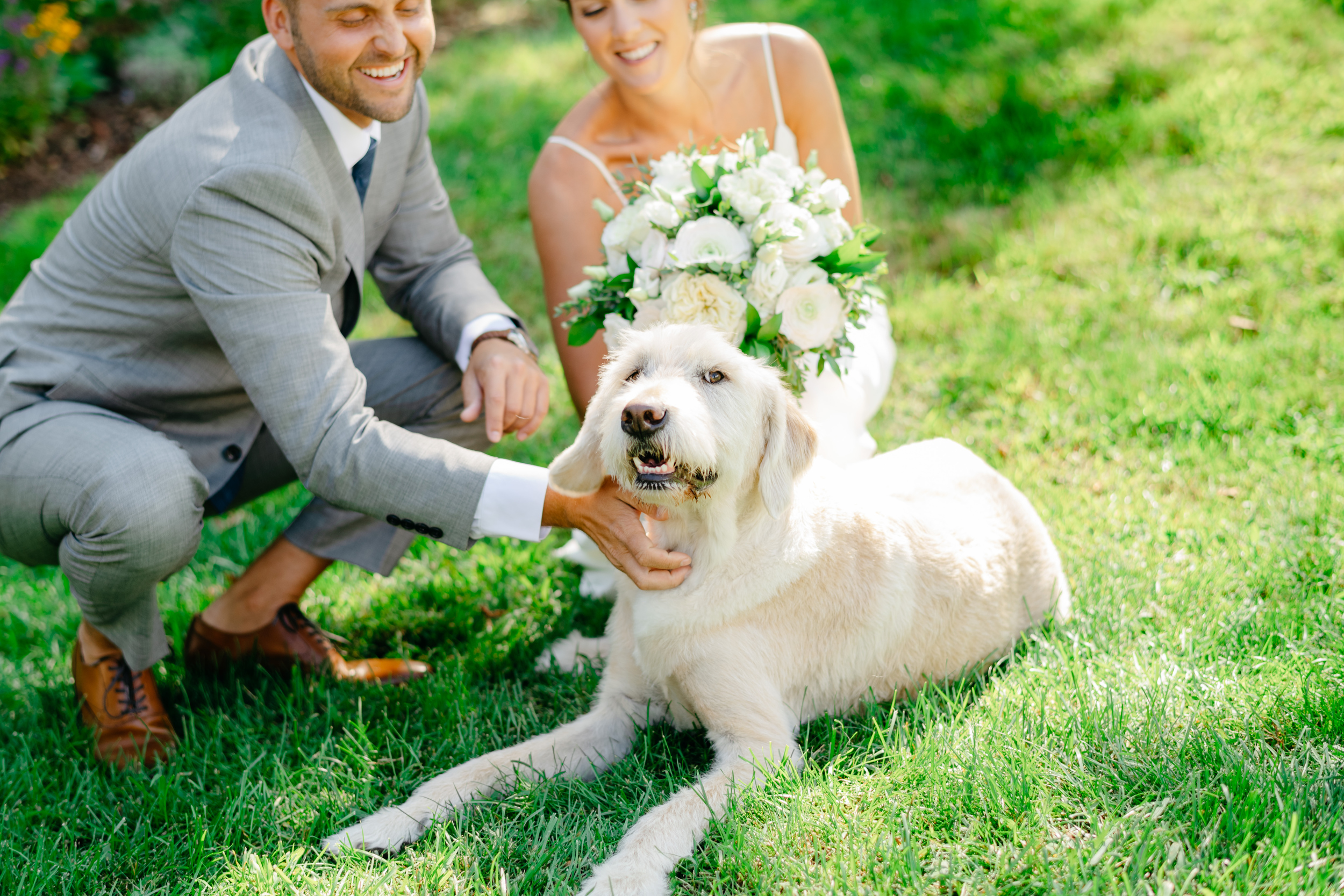 classic portrait with good looking bride and groom and their dog