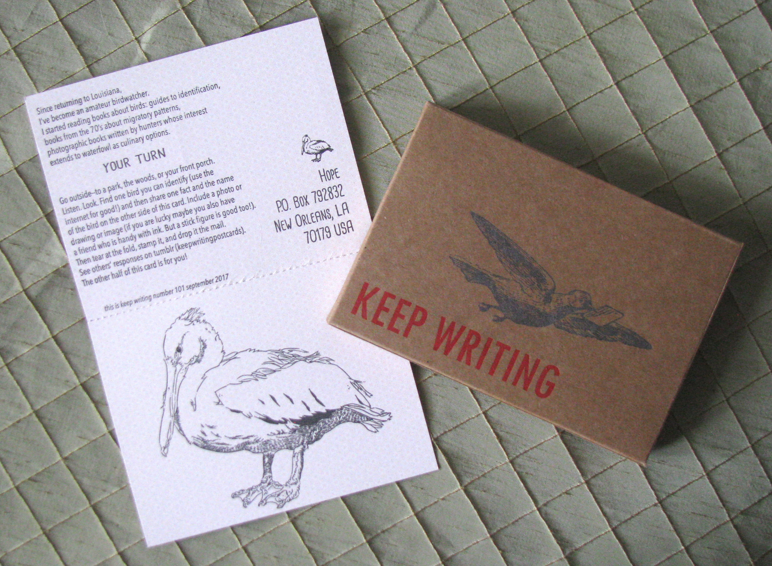 101 September 2017 Collaboration with Steve Larder and letterpress printed box for collecting cards-- learn about a local bird!